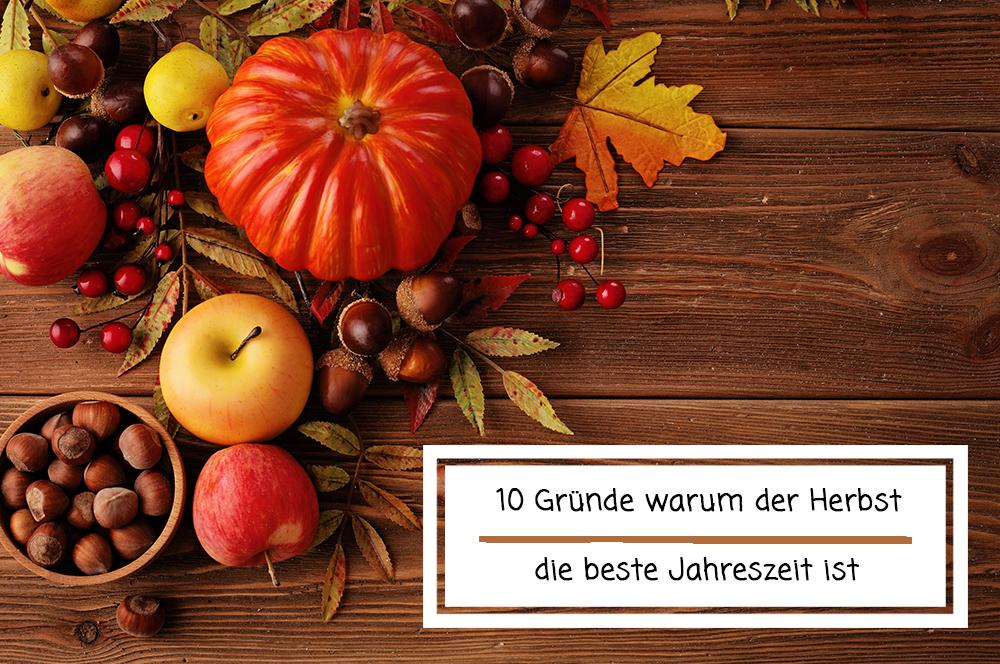 10 Gründe, warum der Herbst die beste Jahreszeit ist